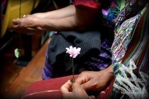 Fuente: Prensa Comunitaria, http://comunitariapress.blogspot.com/