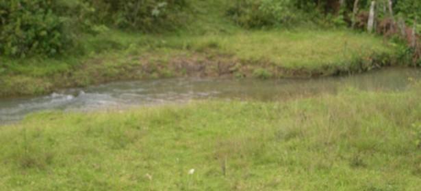 Rio Mescal, en el Rincón San Valentín, fuente principal de agua potable del área urbana de Purulhá.