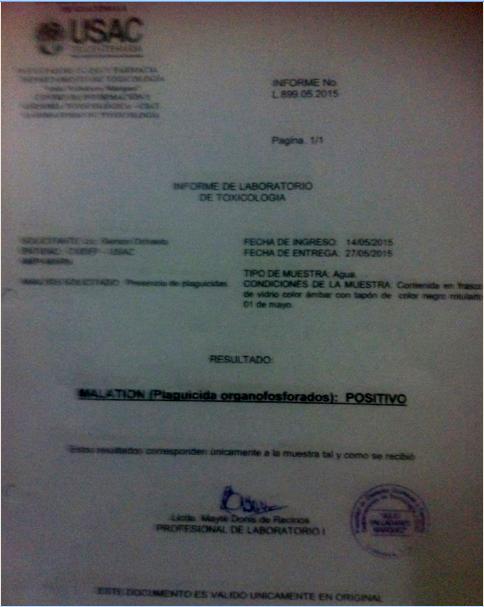 http://www.facebook.com/pages/El-Informante-petenero/1531075563780685 medio informativo que está documentando la grave situación.