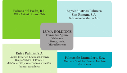 Empresas relacionadas con Palma del Ixcán. Elaboración propia