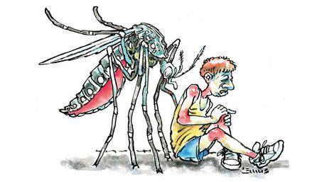 Ilustración tomada del blog de Artricenter, disponible en  http://artricenter.org
