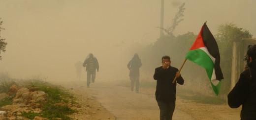 El aire es amarillo por la neblina y el gas este viernes en Bil'in