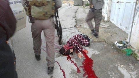 Esta joven fue disparado recientemente en el Checkpoint H2 en Hebrón. El aumento a las ejecuciones y ataques a la juventud palestina se da paralelamente con su aprisionamiento. Foto: Comité de defensa de Hebrón.